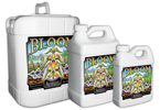 Bloom 3-part 473ml