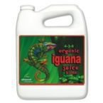 Organic Iguana Juice Bloom 5l
