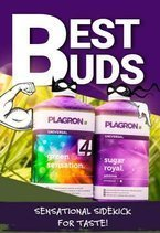 Promocja na Green Sensation 1000ml +  Sugar Royal 300ml GRATIS - BestBuds Plagron